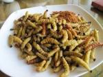 deep fried caterpillars